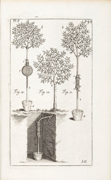 Experiment on an apple tree. Illustration (prob. Engraving) from Stephen Hales, Statical essays: containing vegetable staticks.. Vol. I, 3rd ed. Date: 1738-40