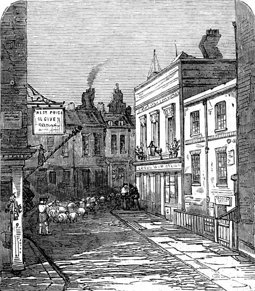 hockley in the hole clerkenwell london 1859