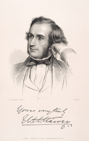 Portrait of William Henry Harvey. Stipple engraving by F. Holl after Sir Frederick William Burton R.H.A. R.W.S. (1816-1900), from William Henry Harvey, A manual of British marine algae. Stipple engraving by F. Holl after Sir Frederick William Burton R
