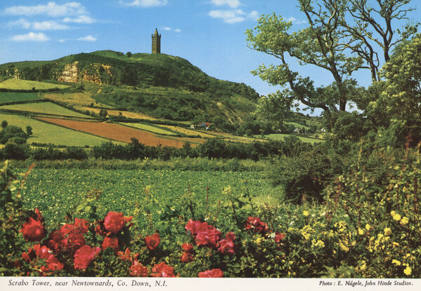 Scrabo Tower near Newtownards, Co. Down, N.I. by E. Nagele