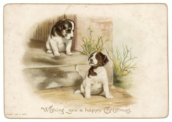 CARD ; DOGS. Two dogs wish you a happy Christmas