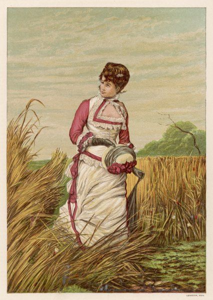 'A trespasser' - a lady goes walking in the cornfields