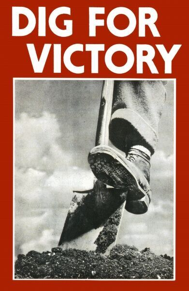Dig for Victory poster - WWII