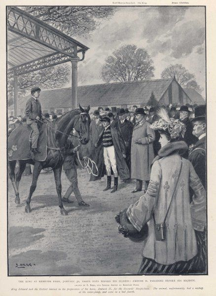At Kempton Park, King Edward VII watches his horse Ambush II before the Stewards' Steeplechase. Sadly the horse comes fourth after a mishap at the water jump