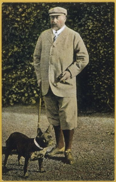 Edward Vii/With Dog. EDWARD VII, BRITISH ROYALTY in tweed suit with 'plus fours'