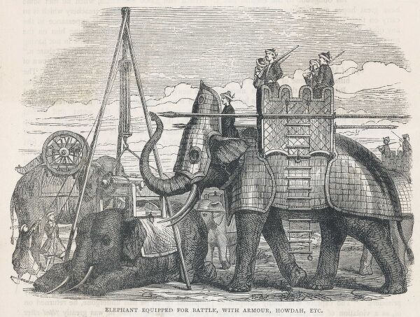 ELEPHANT IN ARMOUR. An elephant equipped for battle with armour, howdah &c