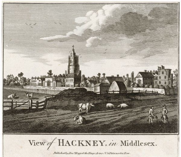 A view of Hackney, complete with grazing cows and pigs