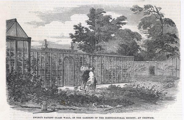 Ewing's glass wall, designed for the Horticultural Society's garden at Chiswick, west London