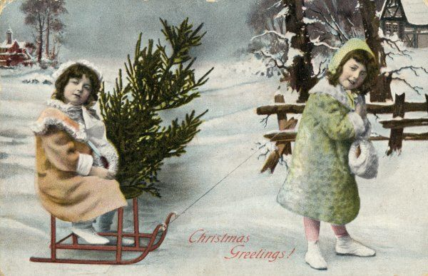 Two girls have found a suitable tree and are bringing it home on a toboggan