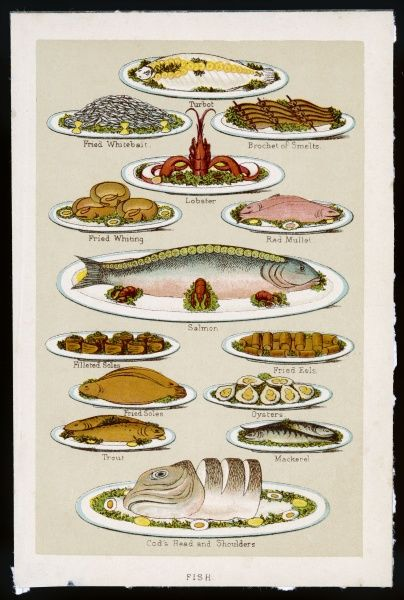 FISH DISHES (1890). Fish dishes