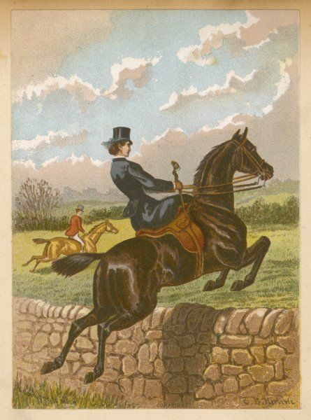 FOX HUNT/JUMPS WALL. Lady jumping a wall, side saddle on a brown horse