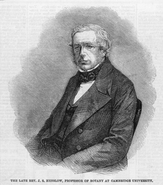 JOHN STEVENS HENSLOW botanist & geologist, Cambridge professor of botany