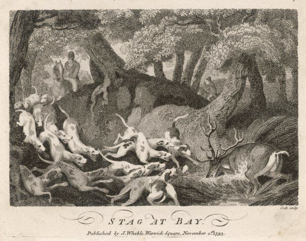 HUNTING DEER 1793. Stag at Bay