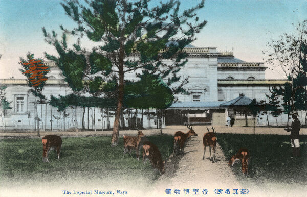 The Imperial Museum at Nara, Japan - with deer
