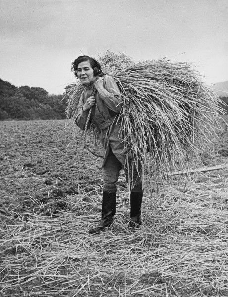 Land Girl carrying a bundle of straw for thatching on a farm during World War II
