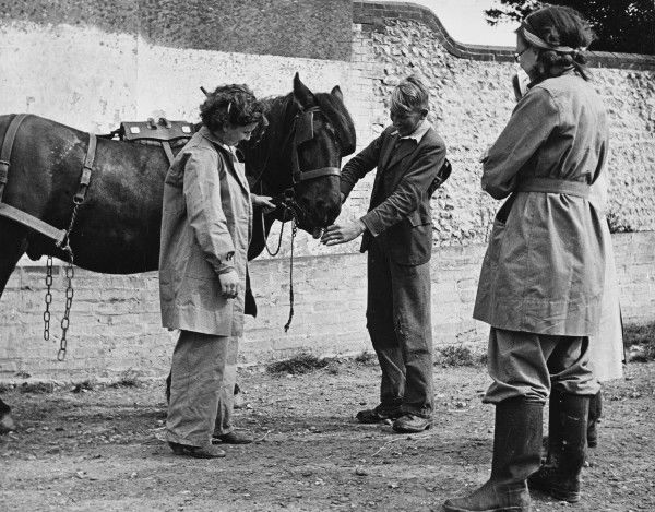 Land Girls WWII. Land Girls learning to work with horses on a farm during World War II