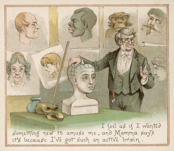 PHRENOLOGY LECTURE. A lecture on phrenology