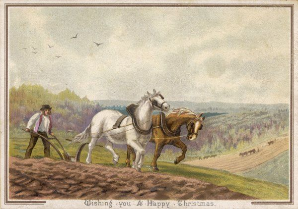 Ploughing with horses, England