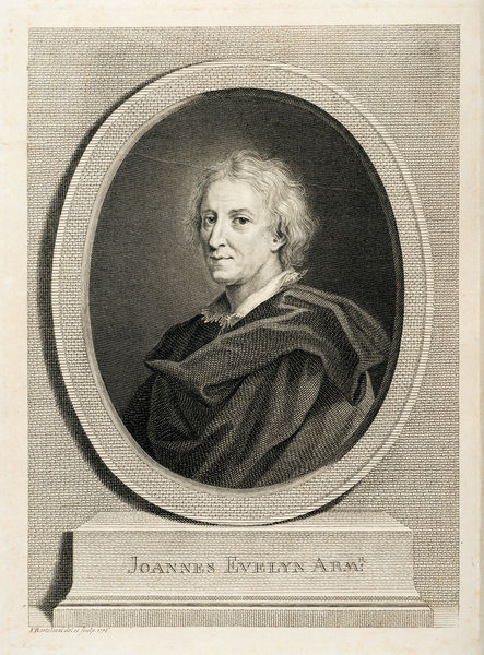 Portrait of John Evelyn. Engraving, by F. Bartolozzi. from John Evelyn, Silva; or, A discourse of forest-trees. Frontispiece. Date: 1776