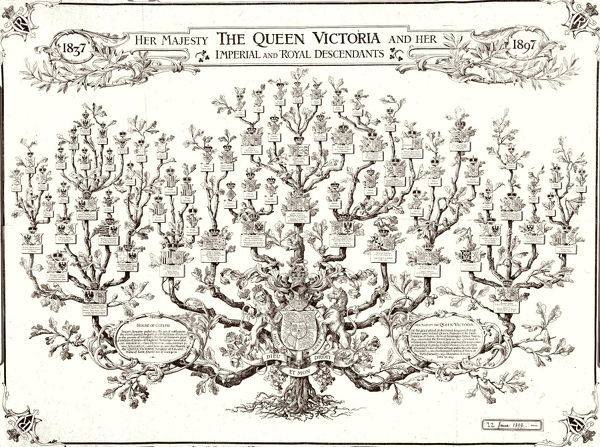 Queen Victoria Family Tree 1897 7402255 Mary Evans