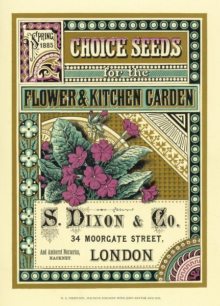 The colourful front cover of thes Dixon & Co seed catalogue, offering choice seeds for the flower and kitchen garden