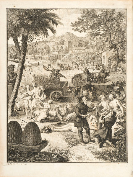 Scenes of country life, with mythological figure. Engraving by Bernard Picart, from Johann Matthias Gesner, Scriptores rei rusticae veteres Latini: Cato, Varro, Columella, Palladius Frontispiece. Date: 1773-1774