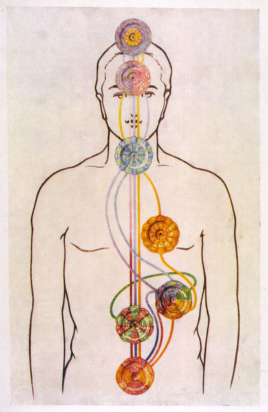 SEVEN CHAKRAS. THE SEVEN CHAKRAS AND THE STREAMS OF VITALITY