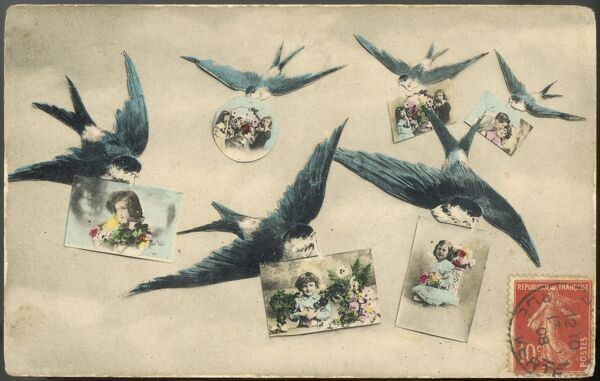 Six swallows delivering postcards, which they hold in their beaks