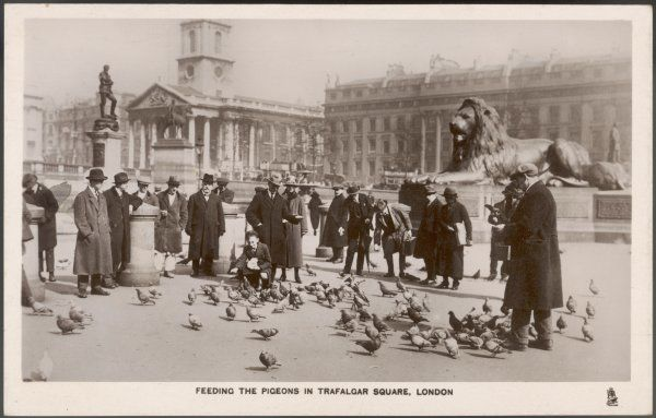 People feed the pigeons