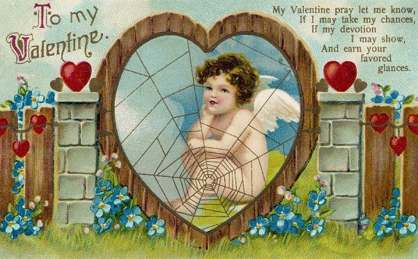 VALENTINE CARD. Cupid spins a web