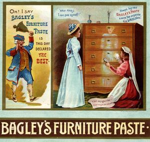 Bailey's Furniture Paste