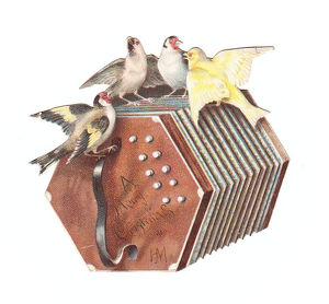 Birds on a concertina-shaped Christmas card