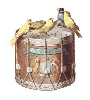 Birds on a drum-shaped Christmas card