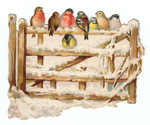 Birds perched on a gate on a cutout Christmas card