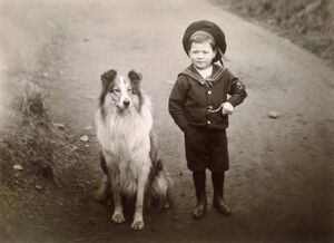 BOY AND COLLIE