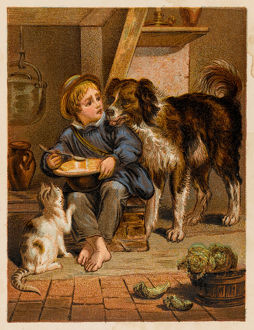 BOY, DOG AND CAT