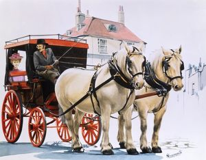 Carriage pulled by two white shire horses