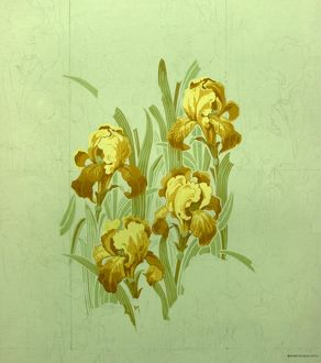 Design for Wallpaper with yellow lilies