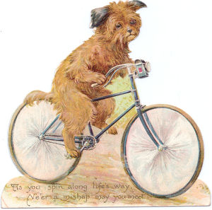Dog on a bicycle on a cutout greetings card
