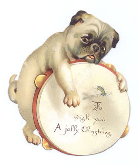 Dog with tambourine on a cutout Christmas card