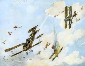 <b>WWI Aircraft</b><br>Selection of 55 items