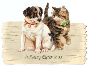 Kitten and puppy on a cutout Christmas card