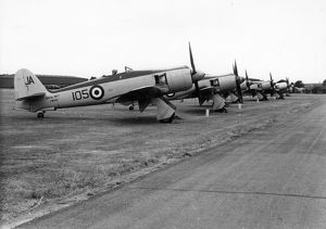A lineup of Hawker Sea Fury FB11s, including VW242