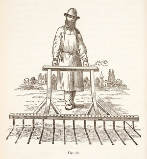 Man sowing seeds in lines, using mechanical device
