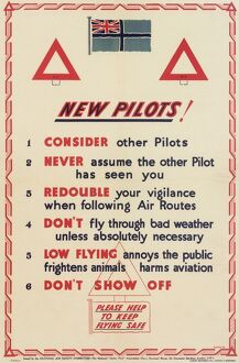 National Air Safety Committee Poster