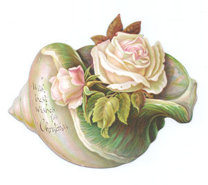 Pale pink roses on a shell-shaped Christmas card