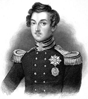 Portrait of Prince Albert as a young man.