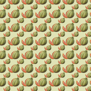 Repeating Pattern - Watermelons