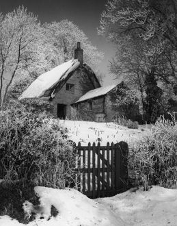 SNOWY THATCHED COTTAGE