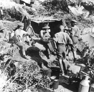 Soldiers at Gallipoli WWI